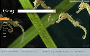 Microsoft Launches Bing Search Engine to Compete With Google