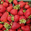 8 Reasons to Eat Strawberries Right Now