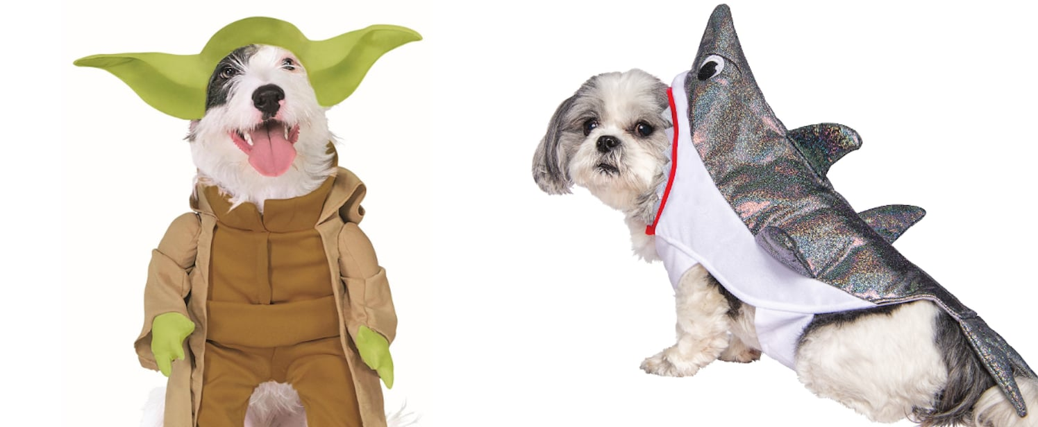 The Best Dog Halloween Costumes From Walmart