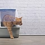 Use a Large Litter Box