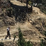 Will and Kate were spotted with their arms around each other as they walked the trail to a Buddhist monastery during their visit to Bhutan in April 2016.