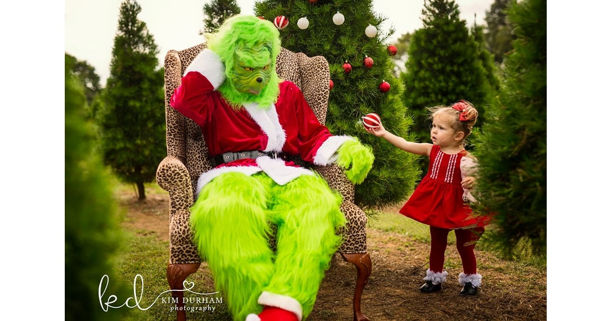 Photographer Stages Grinch Themed Photo Shoot Popsugar