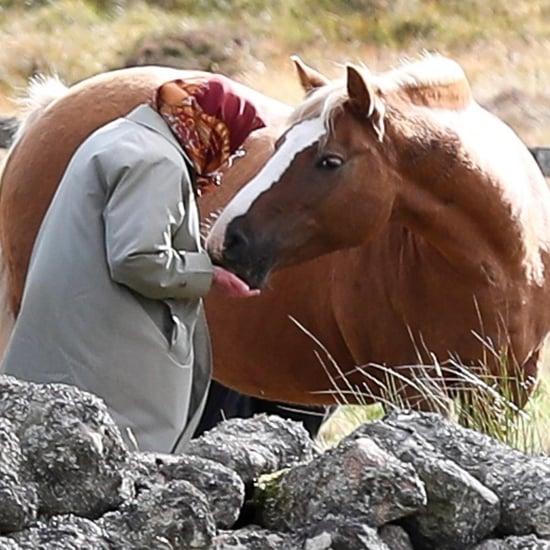 Queen Elizabeth II Feeding Her Horses in Scotland 2018