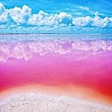View a pink lake.