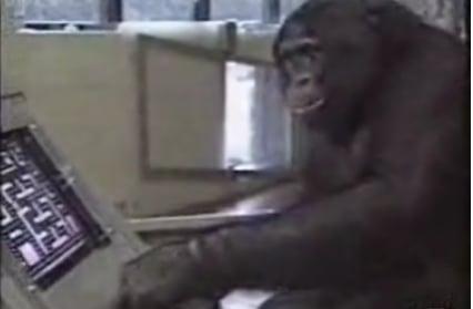 This Chimp Kicks Pac-Man's Ass