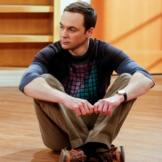 Why Was The Big Bang Theory Canceled?