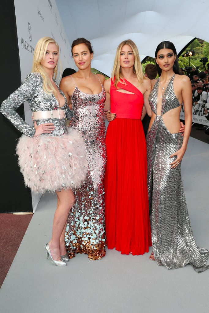 Cannes amfAR Gala Dresses 2017