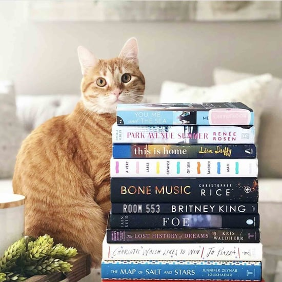 Best Book and Reading Instagram Accounts to Follow