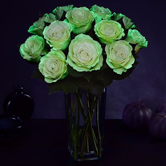 Glow-in-the-Dark Roses