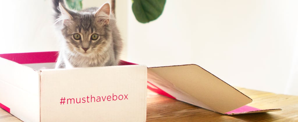 Cats Enjoy POPSUGAR Must Have Just as Much as We Do