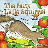 The Busy Little Squirrel ($18)