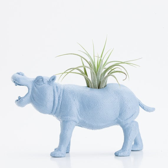 Looking for a vessel that adds a bit of whimsy? This powder blue Hippo Planter ($20) will do the job.