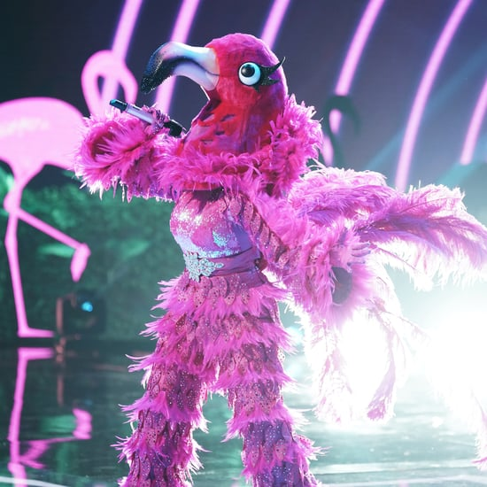 Who Are the Flamingo and Black Widow on The Masked Singer?