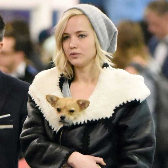 Jennifer Lawrence With Her Dog at JFK Airport