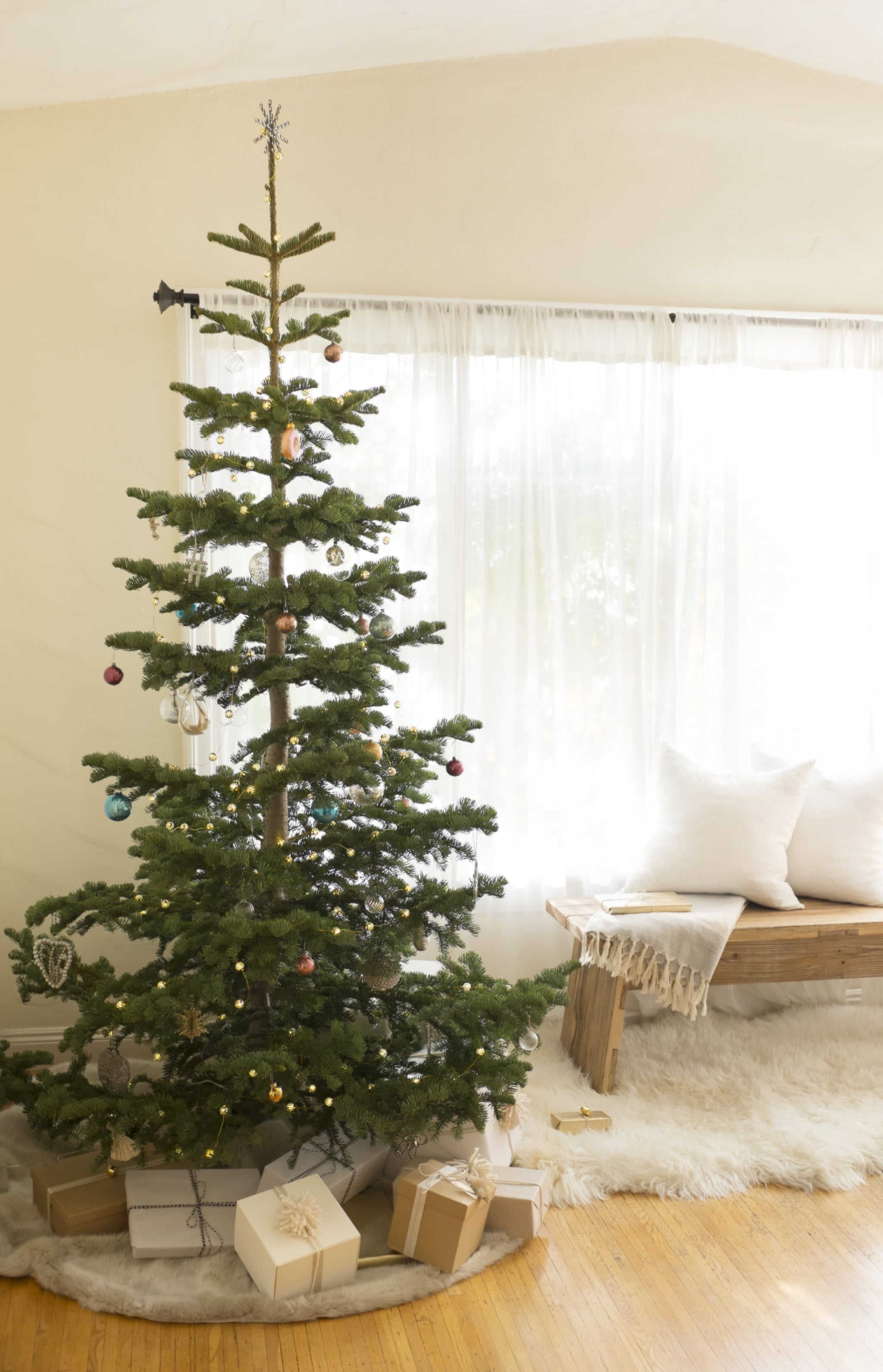 southern christmas tree association