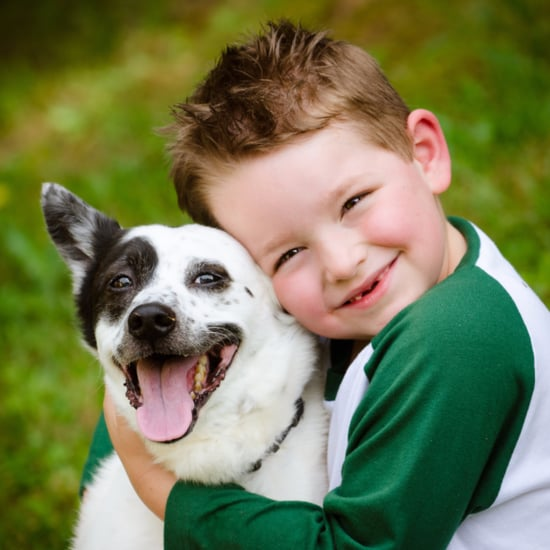 Boy Is Reunited With His Missing Dog