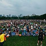 Park Yoga