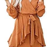 V-Neck Long-Sleeve Mini Dress
