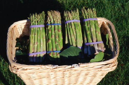 What's In Season: Asparagus