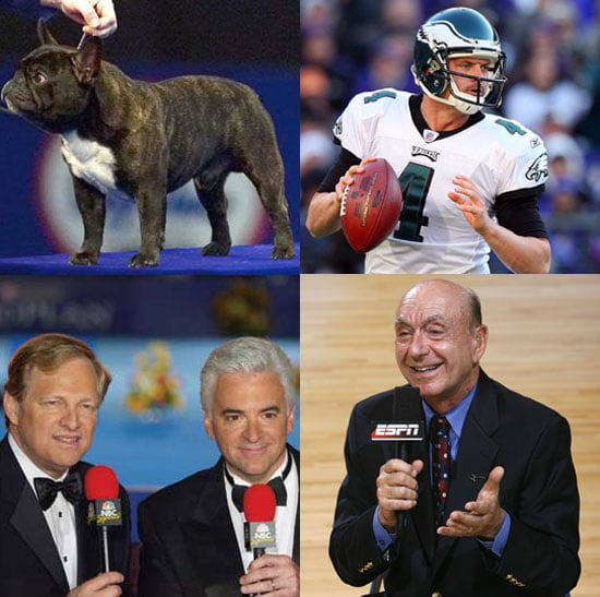 What Will You Watch Today: The NFL or National Dog Show?