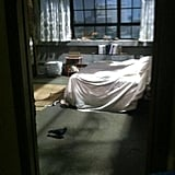 Jake Johnson captured a lone pigeon in Jess's room on the set of New Girl. Source: Twitter user markjakejohnson