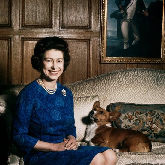 Queen Elizabeth's Corgi Died