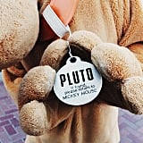 The funny dog tag Pluto always wears.