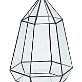 Glass terrarium ($30)