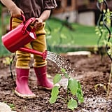 We Plant Our Own Food.