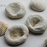Sea Imprints