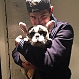 Taylor Lautner posed with a puppy. Source: Twitter user OfficialTL