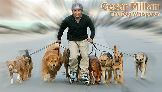 Rollerblades Like Dog Whisperer