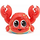 Little Tikes Lil' Ocean Explorers Catch Me Crabbie