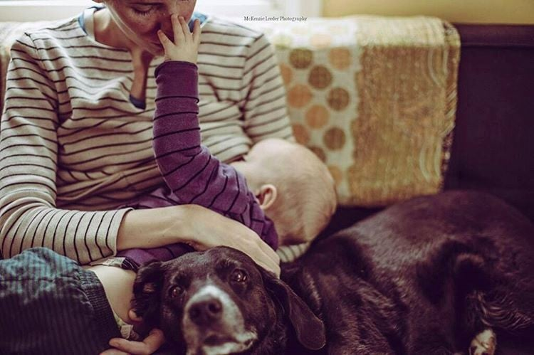These Devoted Pets Supporting Their Breastfeeding Humans Will Make Your Heart Explode