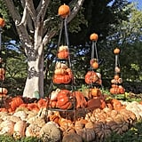 Downtown Disney joins the Halloween fun with pumpkin displays.