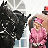Queen Elizabeth II reviews The King's Troop Royal Horse Artillery in 2017.