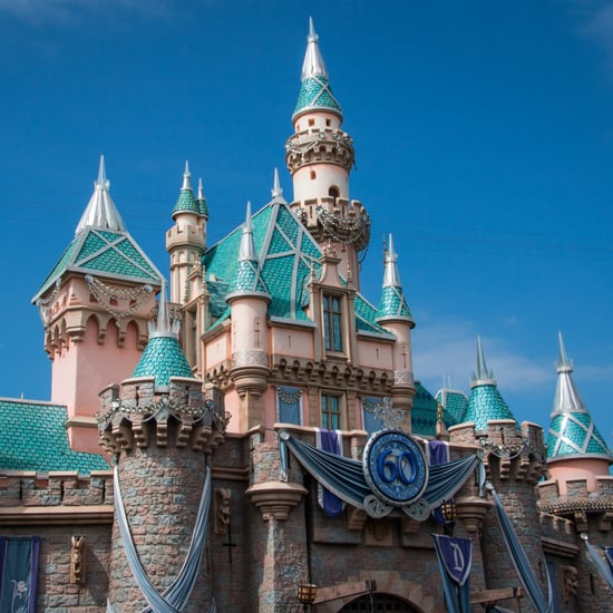What Items Are Not Allowed at Disneyland?