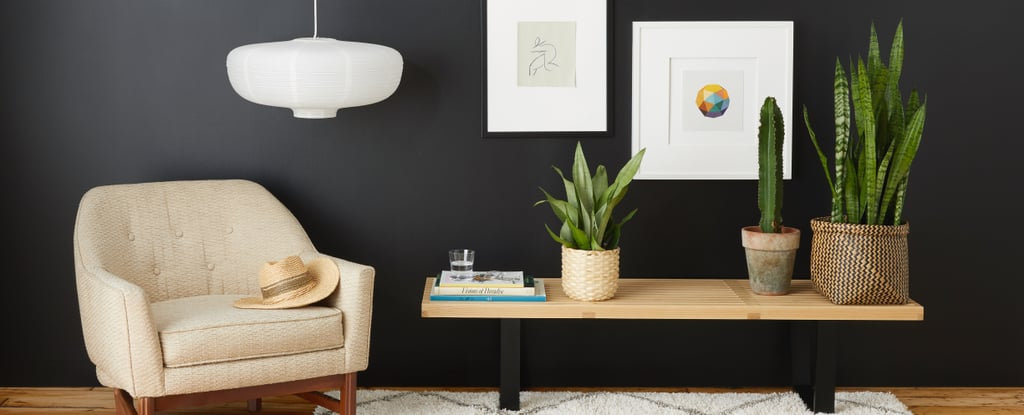 How To Style A Black Accent Wall Popsugar Home