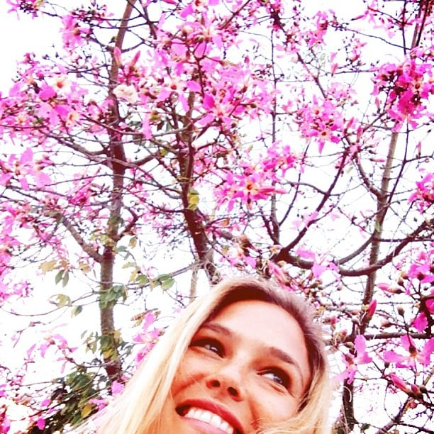 Bar Refaeli shared this flowery photo with her followers. Source: Instagram user barrefaeli