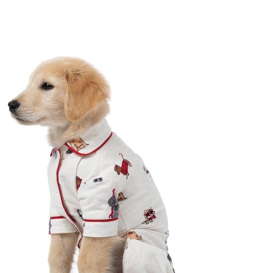 Cutest Dog Christmas Pajamas 2018