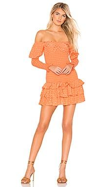 Tularosa's Poppy Dress