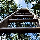 In 1881, all 13 members of the Thirteen Club walked under ladders to enter a room filled with spilled salt.