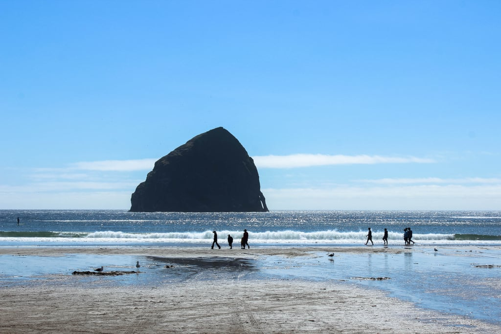 If you have the extra time, another fun outdoor adventure can be found along the coast at Haystack Rock. Located in Cannon Beach, this 235-foot sea stack is one of Oregon's most distinctive landmarks. When the tide is low, you can even walk right up to the gigantic rock's tide pools to discover alluring sea creatures such as colorful starfish, sea anemone, and hermit crabs. Trust me, this place is sprinkled with so much magic. And if your experience is anything like mine, it will most likely be here that you'll consider packing your bags for Portland, permanently!