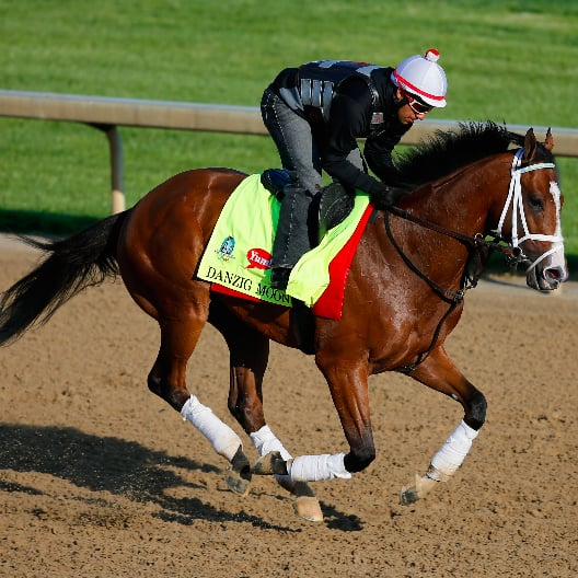 Kentucky Derby Horses 2015