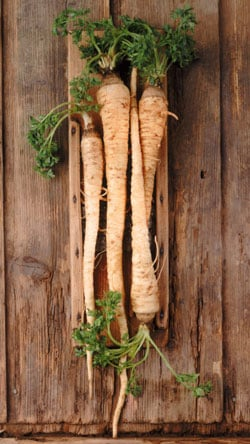 Learn to Love Parsnips