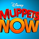 Who Will Be in the Muppets Now Series?