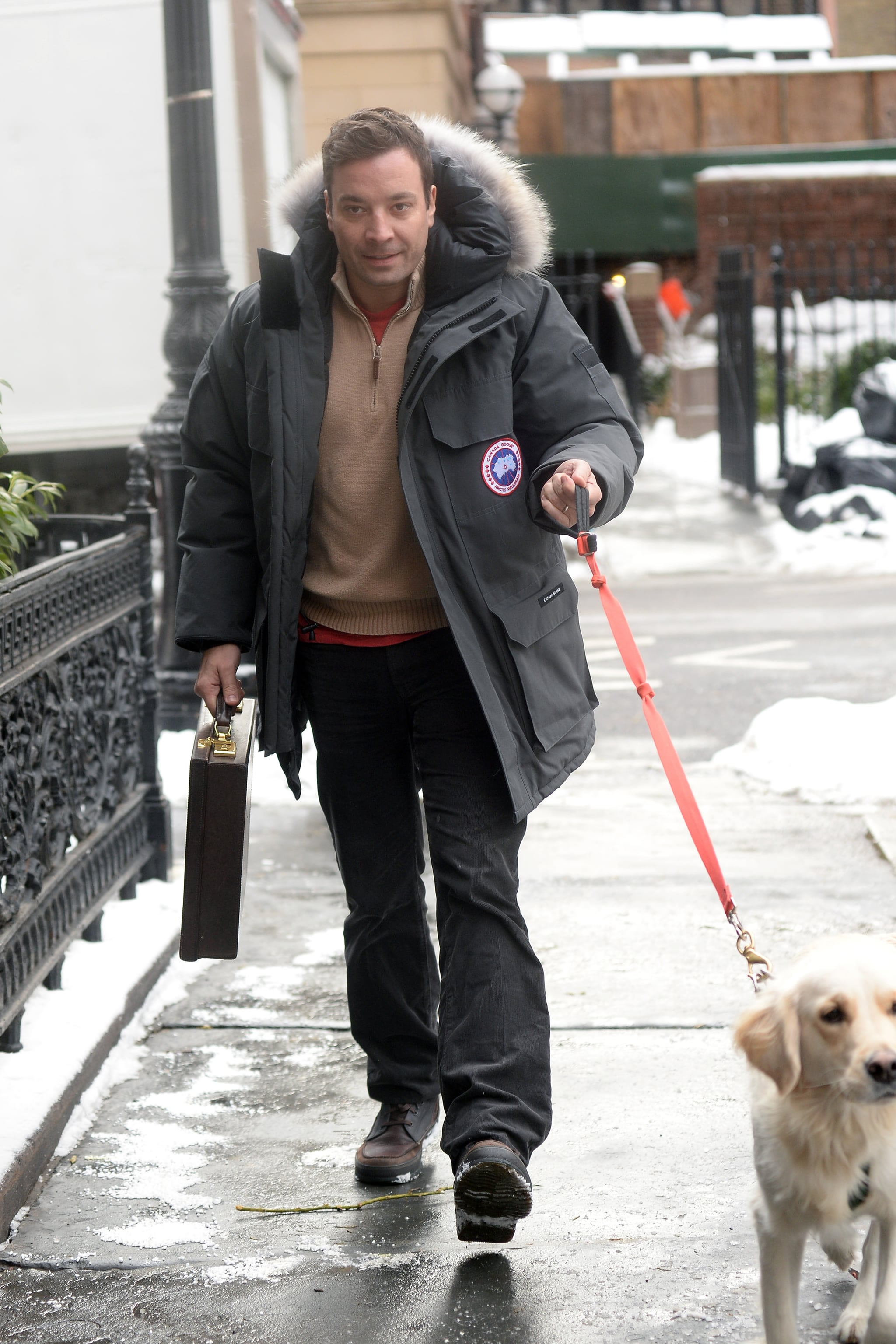 Jimmy Fallon held a briefcase while walking his dog on Sunday in NYC.