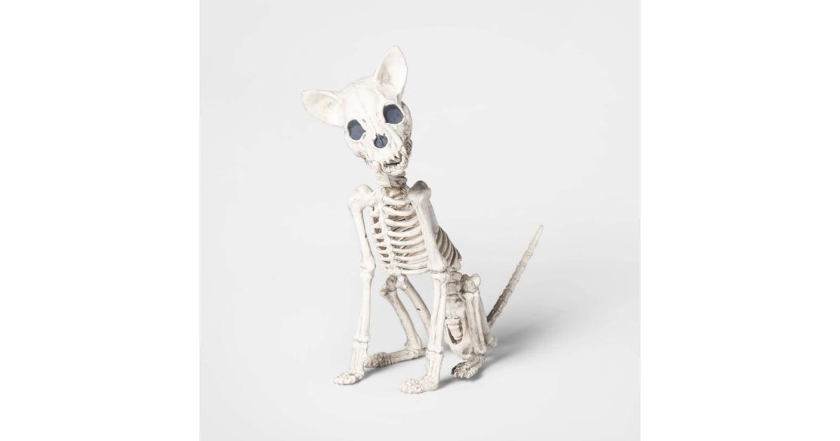 Chihuahua Skeleton Best Target Outdoor Halloween Decorations Popsugar Home Australia