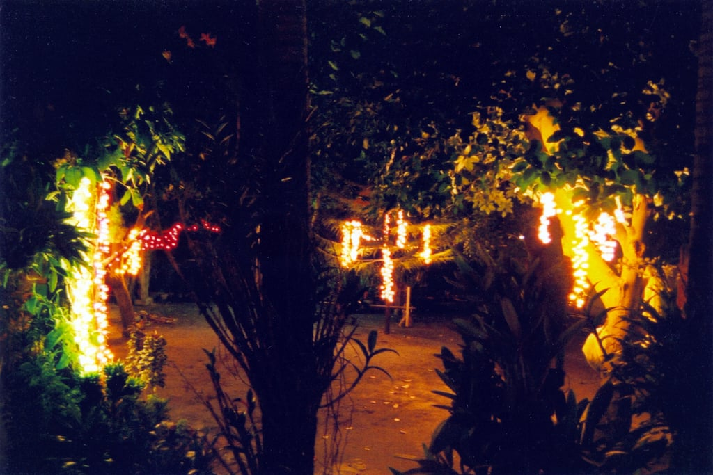 Use Your Holiday Lights in Summer