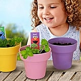 Sesame Street Abby's Garden Planting Activity Set
